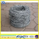 Electro Galvanized Barbed Wire for Fencing