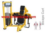 Commercial Strength, fitness machine, Gym and Gym Equipment. Biceps Curl-PT-804