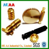 High Precision CNC Machined Worm Shaft, Worm Gear Shaft, Worm Gear Screw Shaft