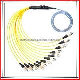 Hx MPO/MTP Optic Fiber Patch Cord Cable for CATV, Multimedia