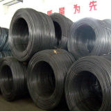 Q195 Steel Wire Rod for Fasteners
