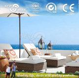 Outdoor Furniture/ Garden Furniture (NGF-GS1003)