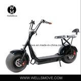 What Do You Think of This Big Wheel Electric Bike in Your Market?