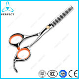 Wholesale High Quality Bbeauty Hair Cutting Scissors