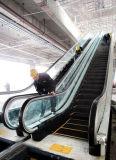 Cheap Price Escalator Cost