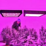 FCC Ce PSE Hydroponic Growing Light Systems