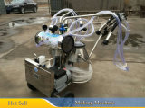 1.1kw  Vacuum  Cow  Breast  Mobile  Milking  Machine with  2  Clusters