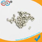 NdFeB Hot Sale Magnet