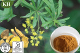 Barberry Extract with High Quality and Good for Stomachic