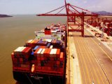 Best Price and Fast Sea Freight From China to MID East