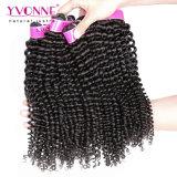 Hot Selling Yvonne Kinky Curly Brazilian Virgin Hair (HJ2-MHW-BH4A-KC)