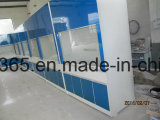 Steel Wooden Fume Hood for Chemical Lab