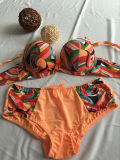 Summer Time Stocked Colorful Bra and Panty (CS16906)