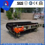 Stainless Steel Belt/ Weigh Scale/Feeder for Cement/Food/Coal Industry