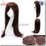 Human Wig 100% Brazilian Virgin Hair Wig