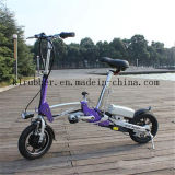 Aluminum Light Weight Folding Electric Bicycle for Youth
