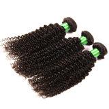 Grade 7A Brazilian Curly Virgin Hair Kinky Curly Virgin Hair 3PCS/ Lot Unprocessed Remy Human Hair Weave Afro Kinky Curly Hair
