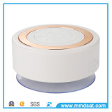 B10 Waterproof Mini Wireless Bluetooth Speaker