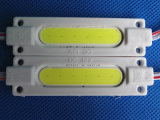 Hot Sale Waterproof 2.5W COB Injection LED Module