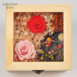 Wooden Preserved Flower for Home Decoration