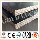 Qingdao Gold Luck Used Plywood Sheets (QDGL150115)
