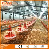 Modern Automatic Poultry Equipment with Free Design & Prefab Shed Construction