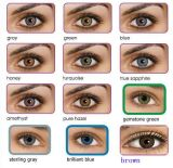 Color Contact Lenses, Freshlook, 12 Mixed Colors, 1pair/Box. Expiration Date: 2017