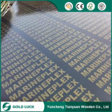 18mm Film Faced Plywood with Brand Names