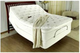 New Design Relax Sexy Design Electric Bed Adjustable Bed with Massage Function