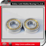 Made in China Supplier Best Price Cylindrical Roller Bearing NUP311M