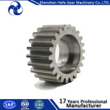 Transmission Small Gear for Conveyor Rollers