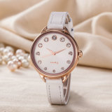 Waterproof OEM ODM Gift Woman Fashion Classic Casual Wristwatch (Wy-128E)