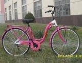 Single Speed S Frame City Bike (CB-018)