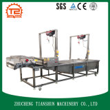 Automatic Commercial Fruit Air Bubble Washaing Machine/Fruit Washer Tsxq-50