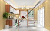 Latest New Design PVC Kitchen Cabinet (zs-469)