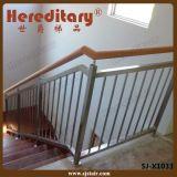 Interior Vertical Filling Balustrade Steel Inox Balustrade (SJ-X1033)