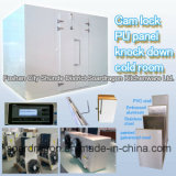 Cam Lock PU Panel Knock Down Cold Room