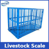 Digital Scale Pig Scale Livestock Scale True-Test Livestock Scale