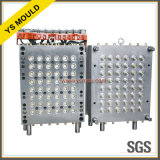 Promotion Hot Sale Plastic Injection Cap Mould Mold (YS831)