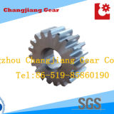 Power Metal Driving Conveyor Lifting Spur Planetary Gear