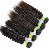 100% Human Natural Brazilian Virgin Hair Extension Kinky Curly Hair Weave Lbh 129