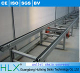Pallet Handing Chain Conveyor with Competitive Price