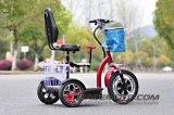 500W/800W 48V 2 Seats Zappy Big Wheel Electric Scooter
