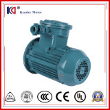 Yb3 Series Ex-Proof AC Asynchronous Induction Motor