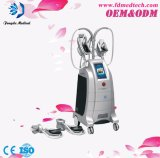 Popular Cryolipolysis Fat Reduction Body Slimming Weight Loss Equipment