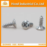 China Supplier Hot Sale Cross Recessed Raised Csk Head Screw