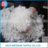 Wholesale Goose and Duck Down Feather