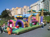 Inflatable Obstacle Course (CZ-1004)