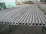 Seamless Stainless Steel Pipe/Tube (TP304H)