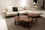 Elegant Beige Leather L Shape Sofa with Steel Legs (LS-012)